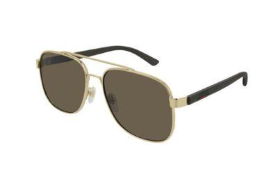 Gucci GG0422S 003-gold-brown-brown 60 Akiniai nuo saulės Vyrams