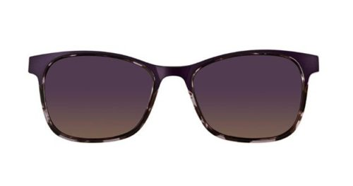 MODO MARINGA clip on purple   tortoise 49 Akinių rėmeliai Moterims